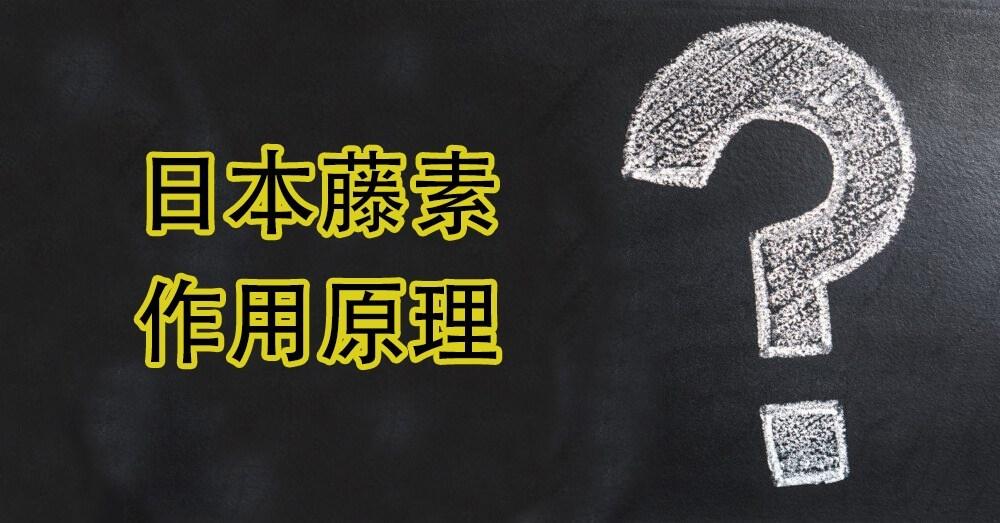 日本藤素成分作用原理
